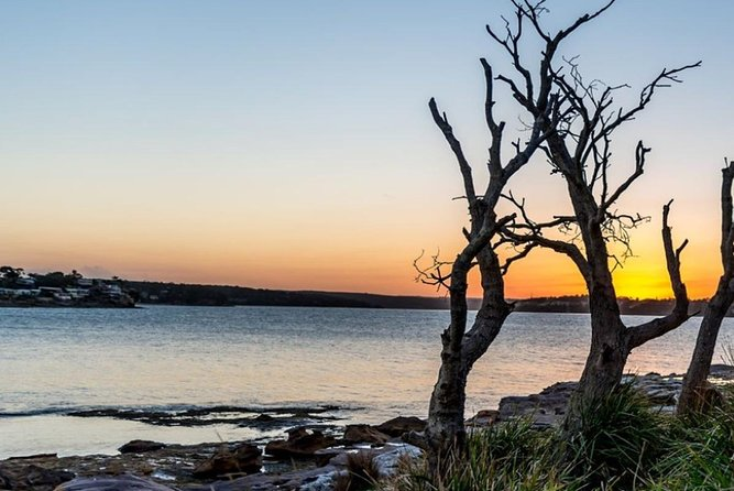 Full-Day Kiama Coast and the Royal National Park Guided Tour