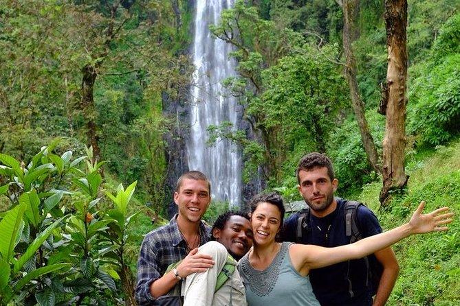 Materuni Waterfalls and Coffee day Tour -With- BURIGI CHATO SAFARIS CO LTD