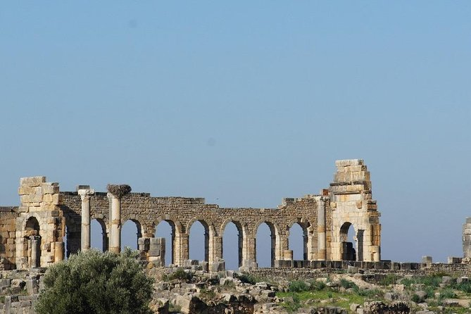 Full-Day Private Tour to Volubilis and Meknes from Fez