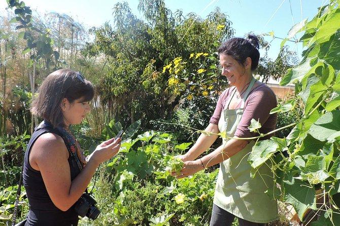 Private Organic Tasting Experience in Algarve