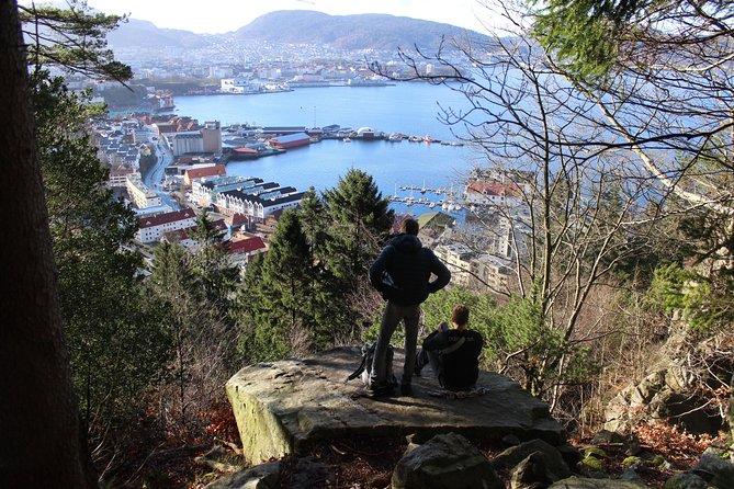 Half-Day Guided Virtual Sightseeing Tour of Mount Floyen