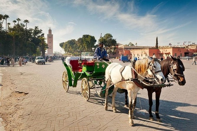 1 Hour Private Horse Carriage Ride in Marrakech