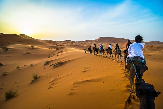 3-Day Desert Private Tour from Marrakech to Fes with Pick Up