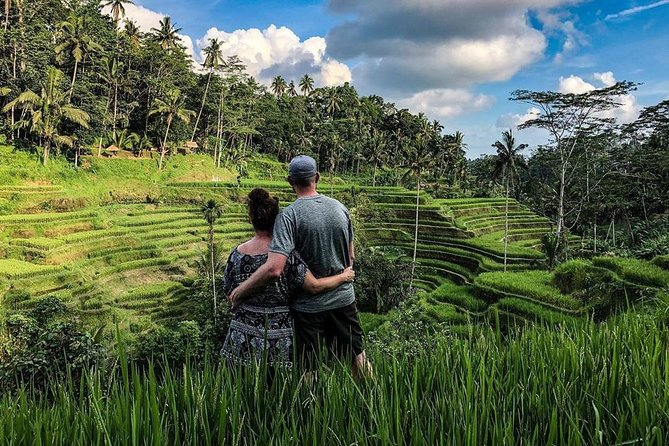 Private Full Day Tour with Ubud and Kintamani Highlights