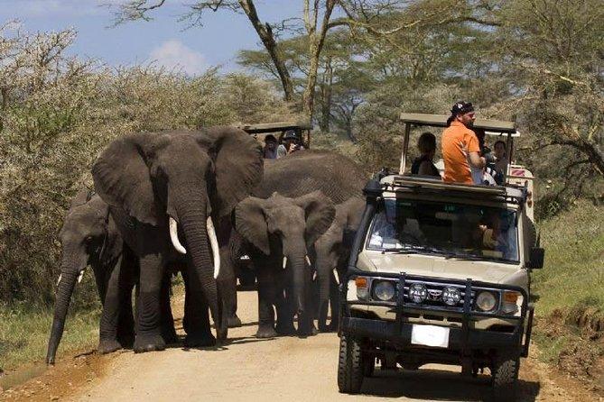 8-Day Private Safari Tour of Kenya and Tanzania from Nairobi