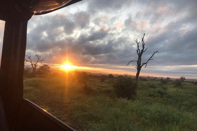 4 Days Kruger Park Safari from Johannesburg