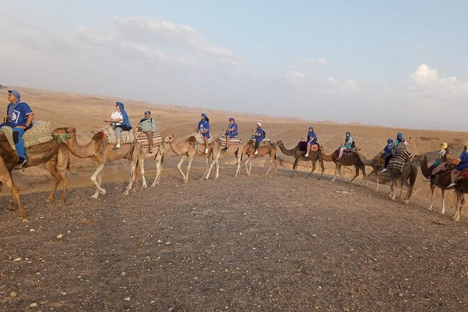 Atlas Mountains And Camel Ride Day Trip From Marrakech