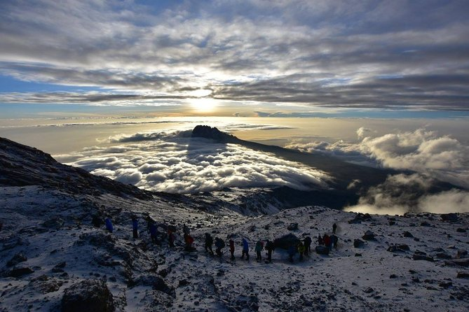 Private 7-Day Kilimanjaro Trek via Lemosho Route from Moshi