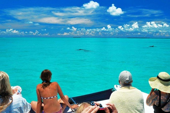 Key West Day Trip from Miami with Optional Activities