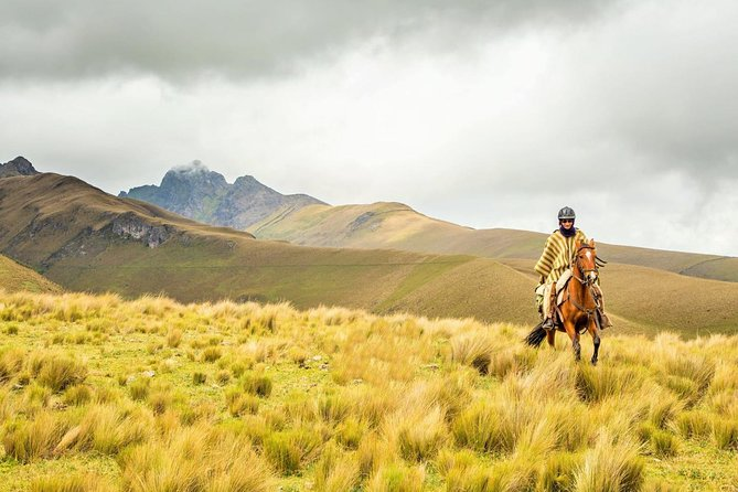 Private Full-Day Cotopaxi National Park Tour and Horse Ride with Lunch