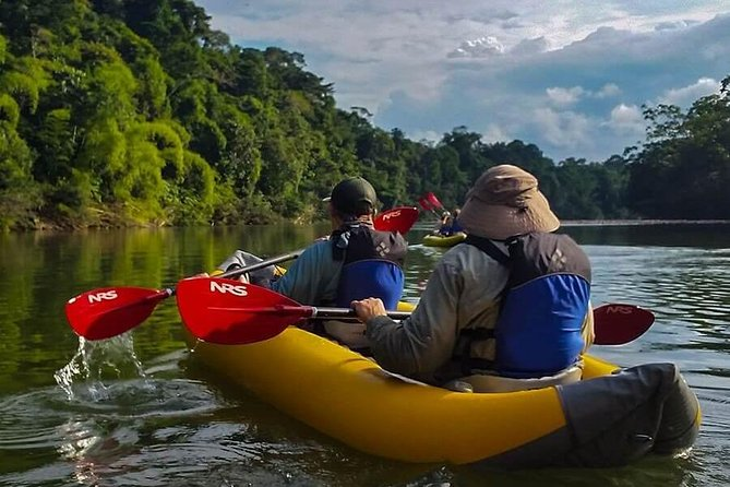 5-Day Yasuni Camping and Kayaking Tour from Coca with Meals