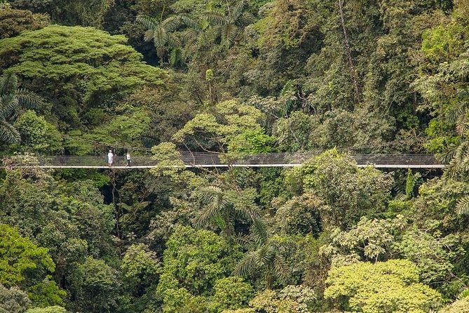 Arenal Hanging Bridges / Guided Walk