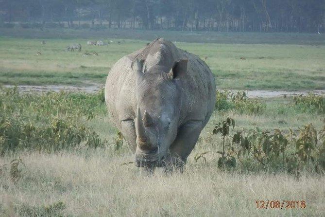 14-Day Maasai Mara Serengeti Ngorongoro crater Zanzibar.