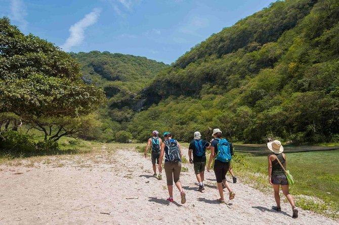 Full Day Hiking Tour to Valley in Dhofar Jarziz