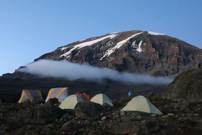 7 Days Private Climbing trough Machame Route to Kilimanjaro