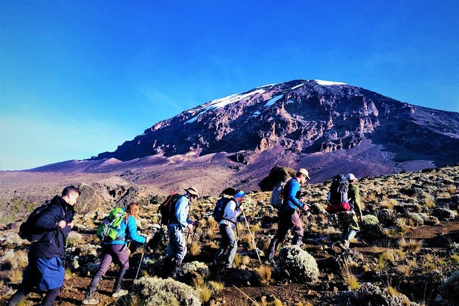 Kilimanjaro Machame Route Hiking Tour