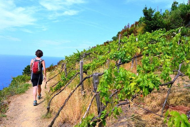 Private Cinque Terre Full Experience: Hiking, Villages, Including Wine and Lunch