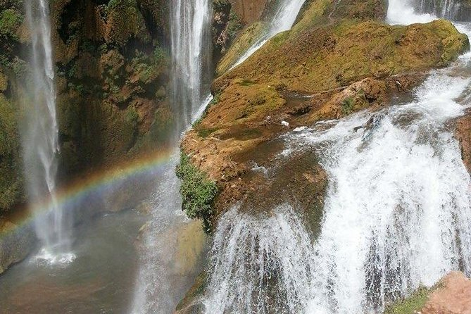 Full-Day Ouzoud Falls Guided Sightseeing Tour from Marrakech