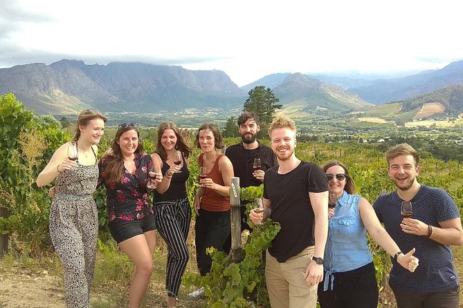 Wine Tour Half Day | Stellenbosch & Franschhoek | Includes lunch & all tastings
