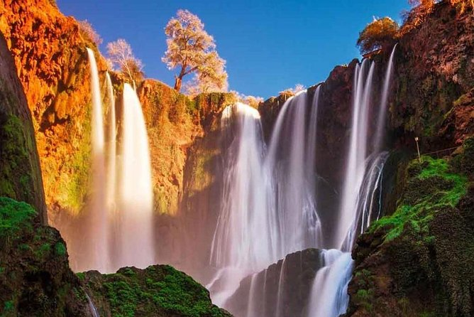 Day Trip to Ouzoud Falls from Marrakech with Local Guide