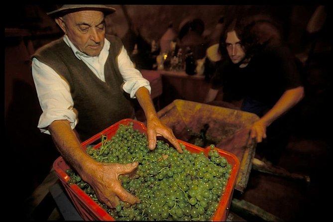 Cruschi peppers and Guarnaccino wine. The treasures of the taste of Basilicata