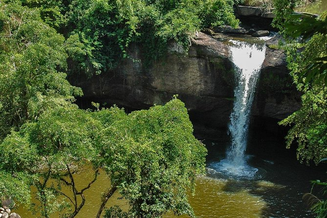 Full-Day Guided Sightseeing Tour of Khao Yai National Park