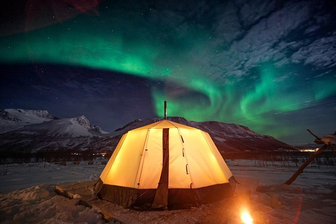 Overnight Stay in Lavvu, Northern Lights, and Reindeer Sledding in Tromso