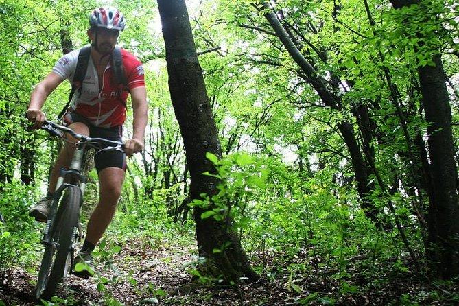 Private Mountain Biking in Vitosha from Sofia