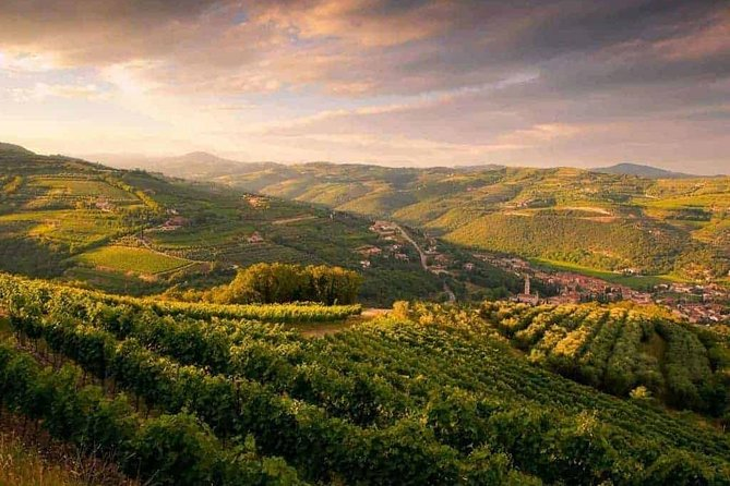 Full-Day Valpolicella Private Tour from Milan with Wine Taste