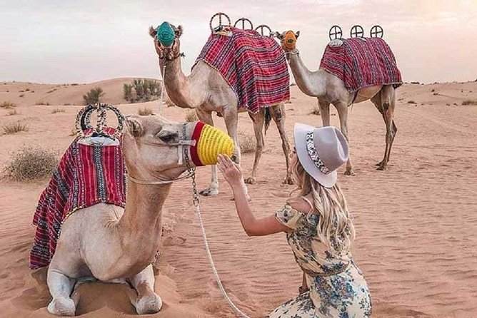 Private 3-Hour Safari Tour from Hurghada with Pickup