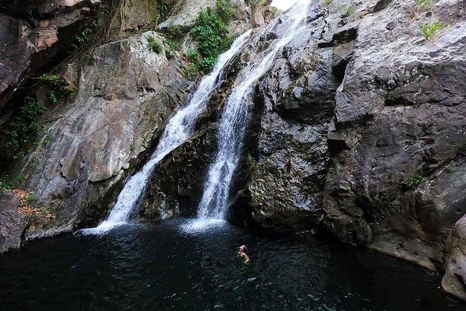 Bach Ma Park via Hai Van Pass Private Full-Day Trekking Tour