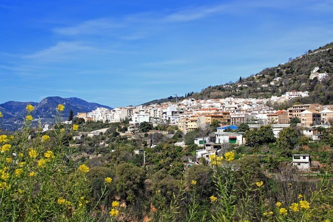 Private 8-Day Almeria Tour with Lanjaron and Baeza