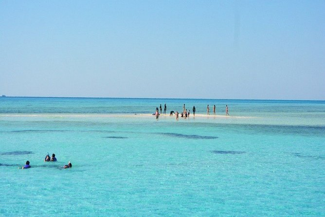 Full-Day Diving and Snorkeling Trip in Ras Mohammed
