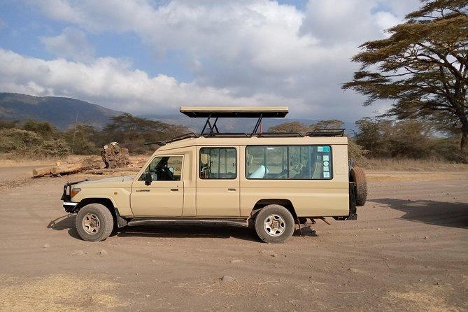 2 Days Luxury Lodge Safari To Tarangire / Lake Manyara & Ngorongoro Crater