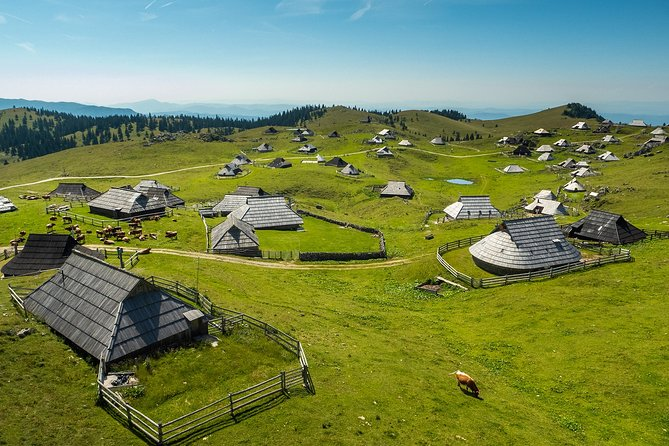 We recommend an optional trip to Velika planina shepard settlement