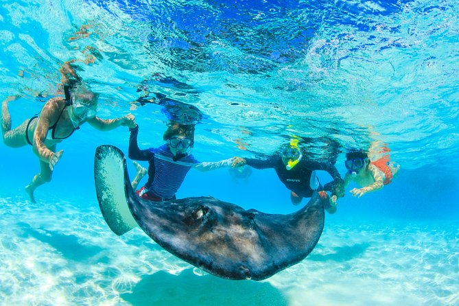 Full-Day Stingray City and Snorkeling Private Experience