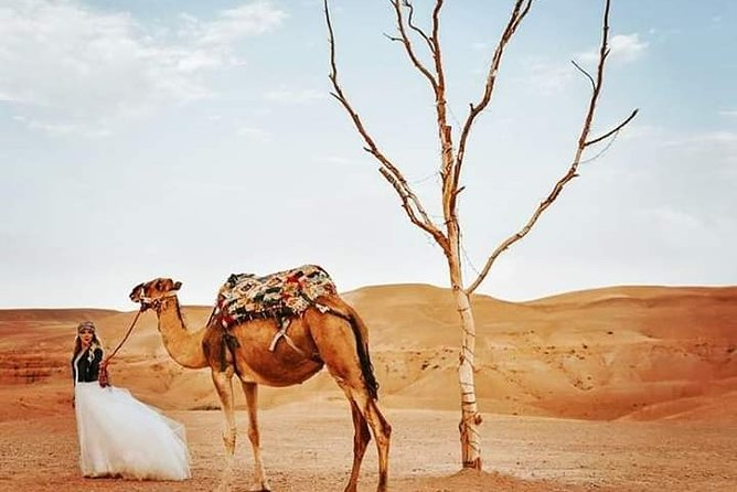 Desert Agafay and Atlas Mountains Full-Day Tour from Marrakech with Camle ride
