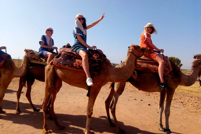 3 Hours Private Marrakech Sunset with Camel Ride
