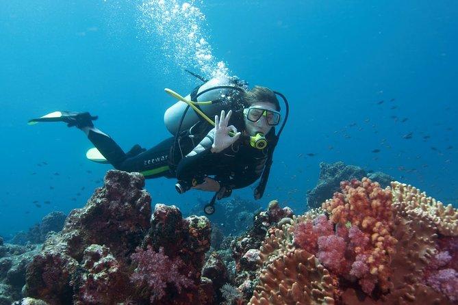 Diving Antalya Kemer