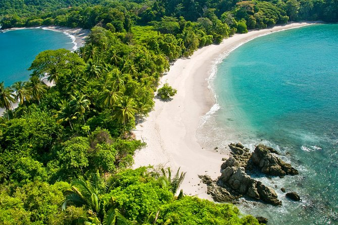 One day tour in Manuel Antonio National Park from San Jose