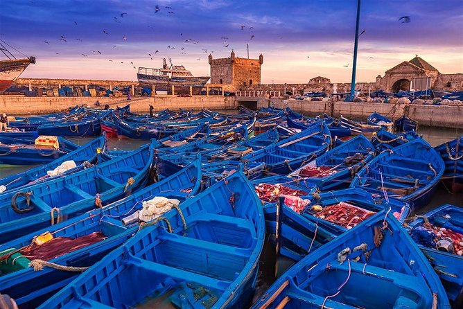 Essaouira excursion 1 day departure from Agadir