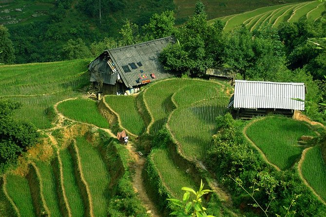 Discover Sapa isolated small ethnic group village & Bac Ha market