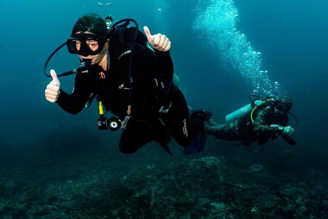 Open Water + Advanced Course - Premium Certifications Package in Pemuteran, Bali