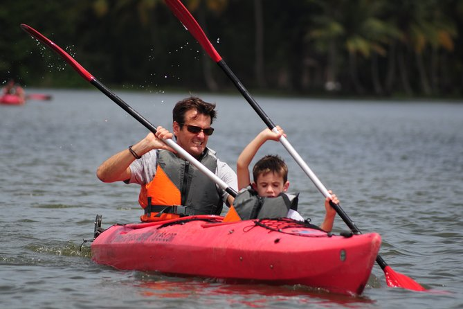 Backwater Kayaking at Alleppey