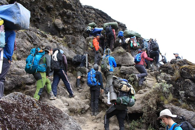 Kilimanjaro - 7 days 6 Nights - Machame Route