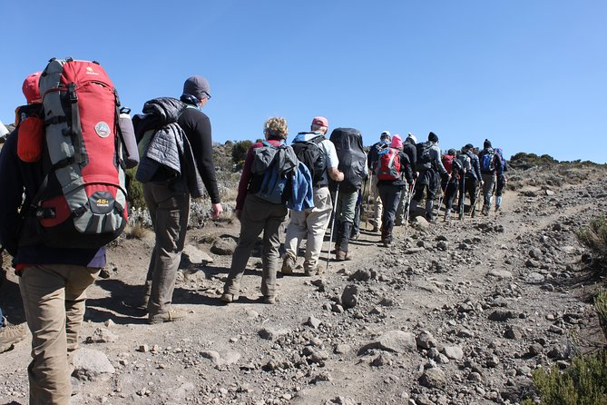 Kilimanjaro - 6 Days 5 Nights - Machame Route