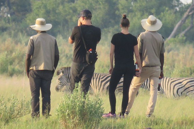 1 Day Okavango Delta Full Day Trip