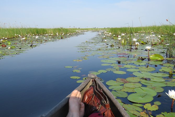 3 Day Inner Okavango Delta Safari, all-inclusive