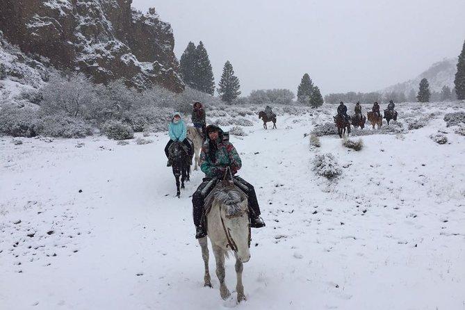 La Fragua Horseback Riding