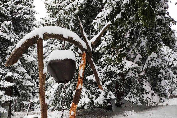 Snowshoeing Vitosha for 1 day